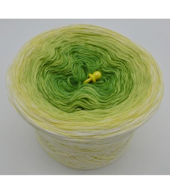 Kiwi küsst Limette - 3 ply gradient yarn image 6