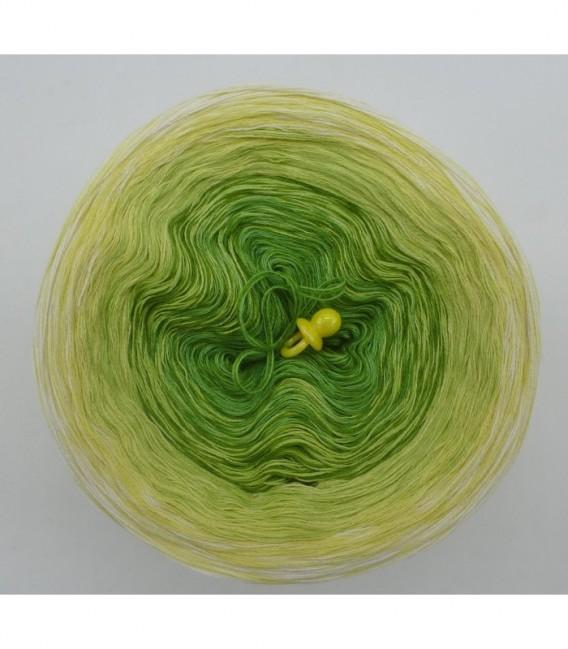 Kiwi küsst Limette - Farbverlaufsgarn 3-fädig - Bild 7