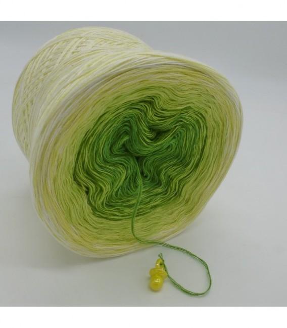 Kiwi küsst Limette - 3 ply gradient yarn image 8