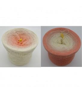Pfirsich Blüte - Farbverlaufsgarn 4-fädig