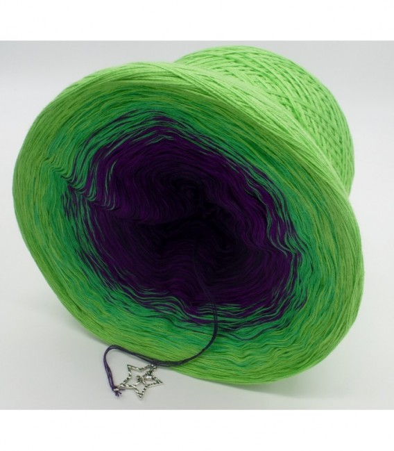 Poison - 4 ply gradient yarn - image 9