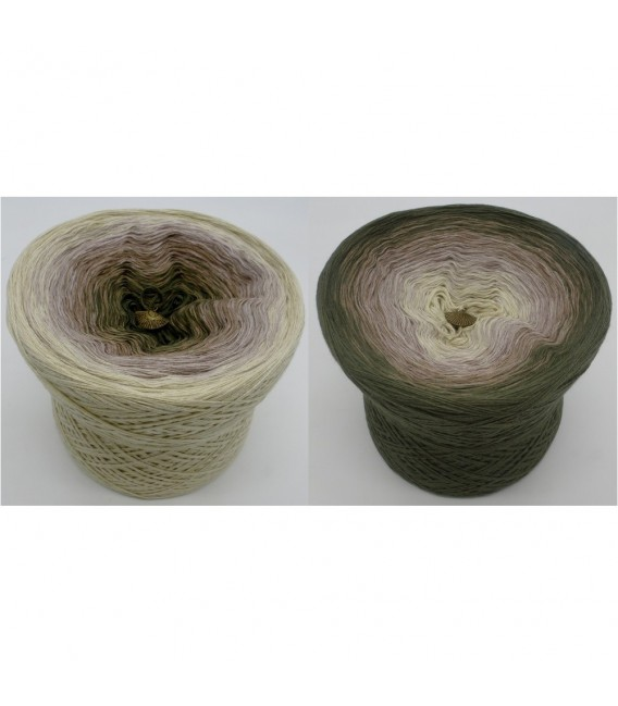 Lonely Eagle - 4 ply gradient yarn - image 1