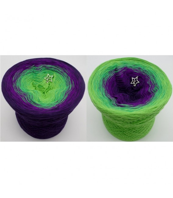 Poison - 4 ply gradient yarn - image 1