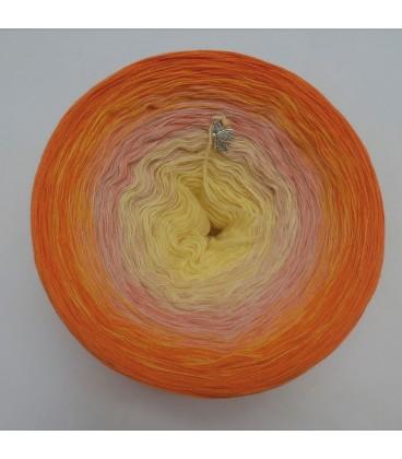 Lady Sunshine - 4 ply gradient yarn - image 7