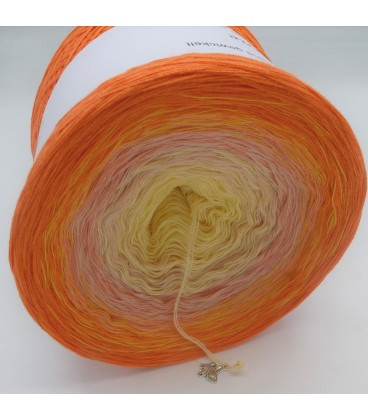 Lady Sunshine - 4 ply gradient yarn - image 9