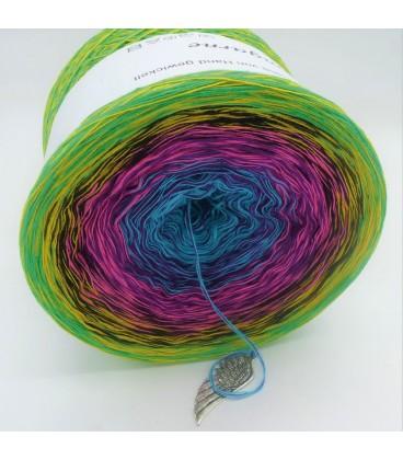 Sommerbunt mit Schwarz (Summer colorful with black) - 4 ply gradient yarn - image 9