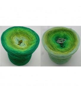 Garten der Träume - 4 ply gradient yarn image