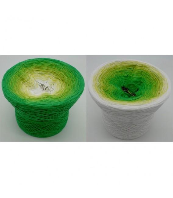 Lemongras (Lemongrass) - 4 ply gradient yarn - image 1