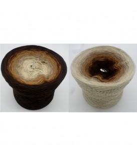 Schokotraum (Chocolate Dream) - 4 ply gradient yarn - image 1