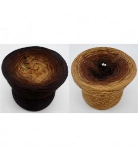 Schokokuss - 4 ply gradient yarn image