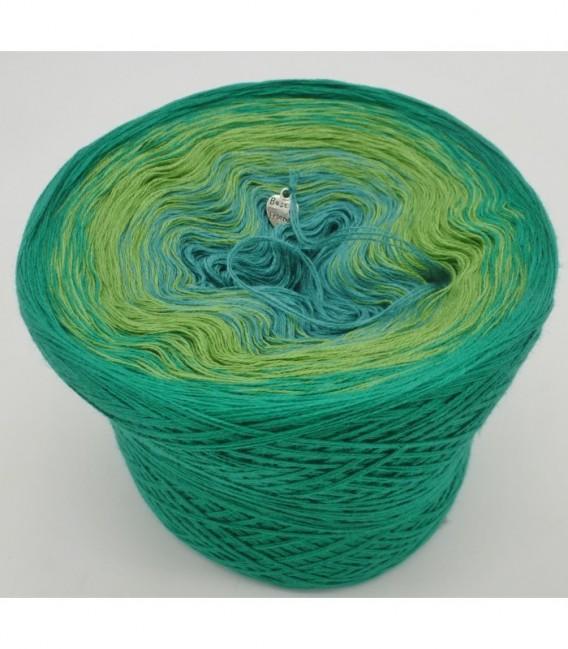 Froschkönig - 3 ply gradient yarn image 6
