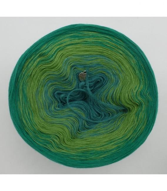 Froschkönig - 3 ply gradient yarn image 7