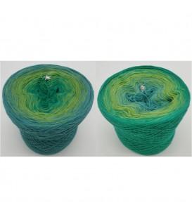 Froschkönig - 3 ply gradient yarn