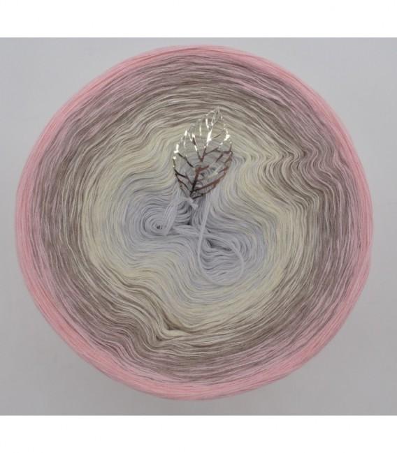 Venus - 4 ply gradient yarn - image 7