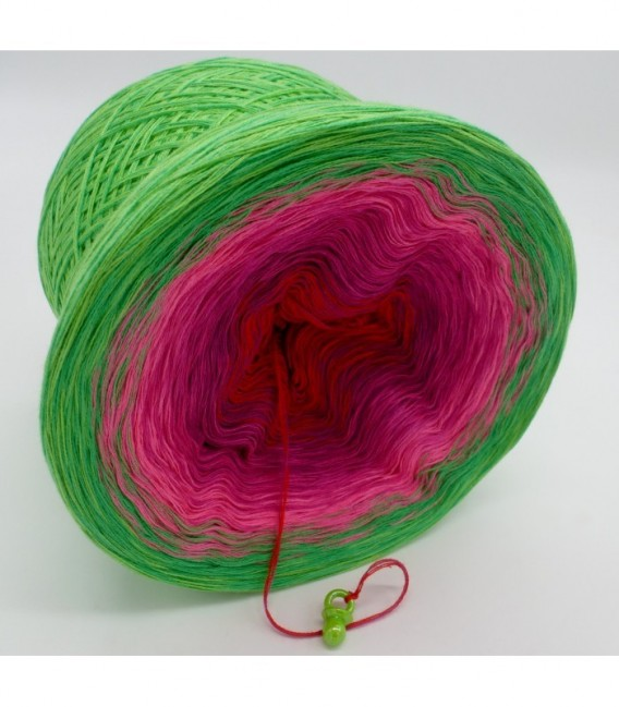 Lovely Roses - 4 ply gradient yarn - image 8