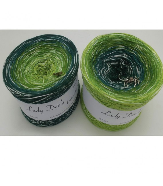 Avalon - 4 ply gradient yarn - image 1