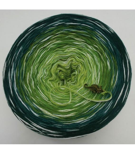Avalon - 4 ply gradient yarn - image 7