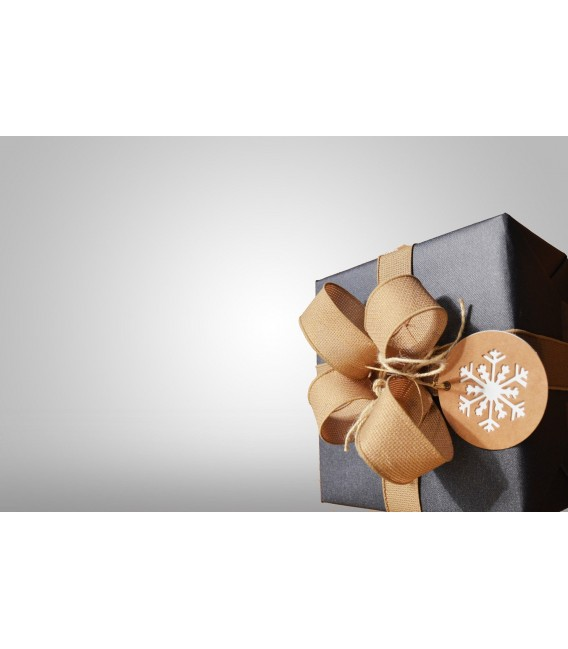 gift-certificate-christmas-option-1