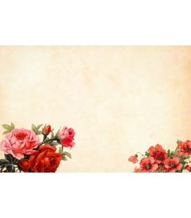 Certificat-cadeau - Anniversaire - Option 2