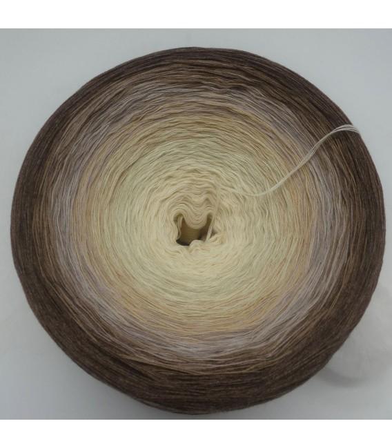 Vanille Schokoccino (Ванильное шоколадное кокино) Гигантский Bobbel - 4 нитевидные градиента пряжи - Фото 3