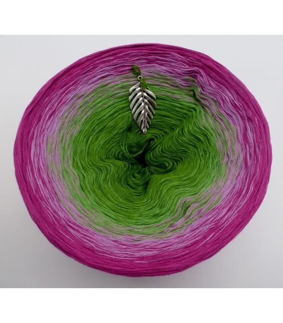 gradient yarn Garten der Sehnsucht - Raspberry outside 2