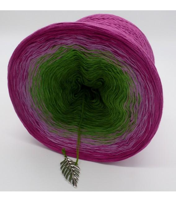 gradient yarn Garten der Sehnsucht - Raspberry outside 3