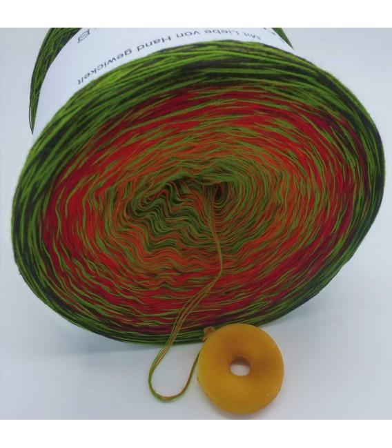Sonderbobbel Nr. 8 (Special Bobbel No. 8) - 4 ply gradient yarn - image 3