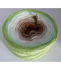 Frühlingswind - 2 ply gradient yarn