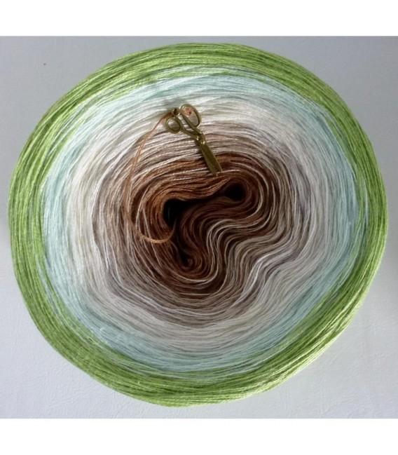 Frühlingswind (spring wind) - 2 ply gradient yarn - image 2