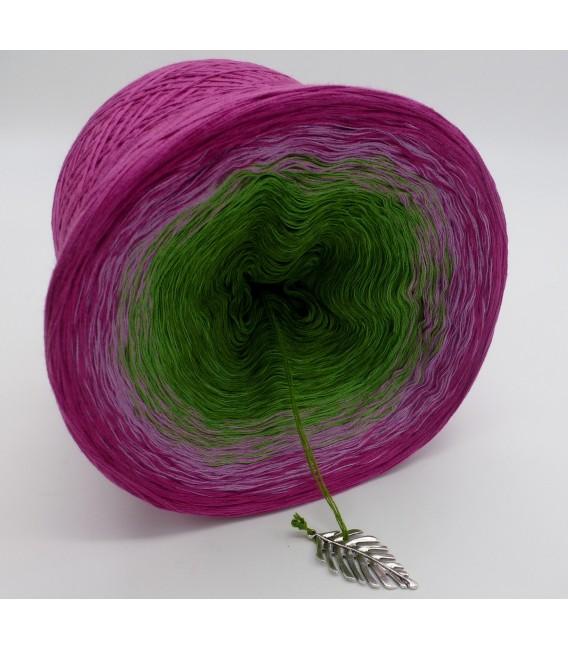 gradient yarn Garten der Sehnsucht - Raspberry outside 4