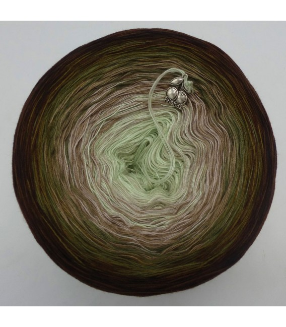 Abendglut (Evening embers) - 4 ply gradient yarn - image 5