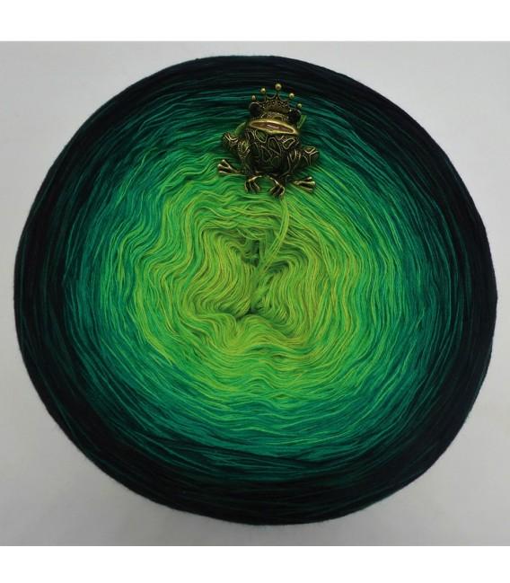 Sonderbobbel Nr. 15 (Special Bobbel No. 15) - 4 ply gradient yarn - image 2
