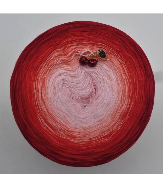 Sonderbobbel Nr. 16 (Special Bobbel No. 16) - 4 ply gradient yarn - image 2