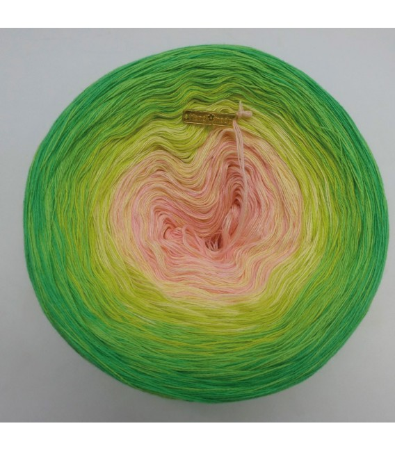 April Bobbel 2019 - 4 ply gradient yarn - image 3
