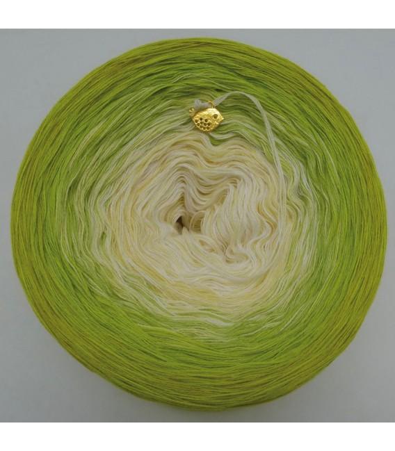 Mai (May) Bobbel 2019 - 4 ply gradient yarn - image 3