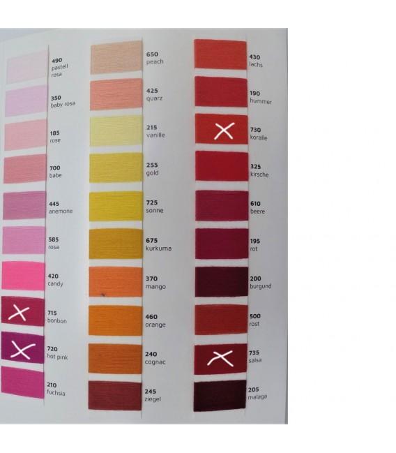 Leipziger Allerlei - Couleur désirée à l'extérieur - 4 fils de gradient filamenteux - Photo 4