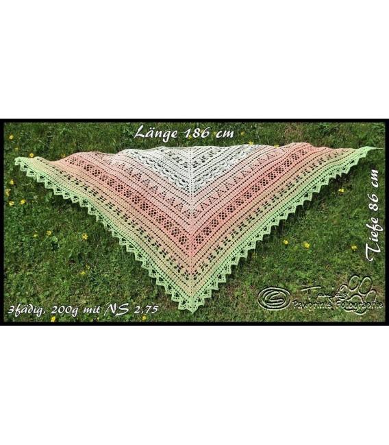 """Crochet Pattern shawl """"Windspiel"""" by Tanja Schuster - image 3"""