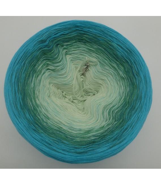 Offenes Meer (Open sea) - 4 ply gradient yarn - image 3