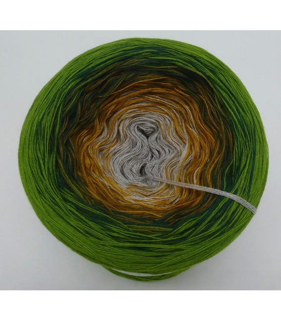 Colorful - 4 ply gradient yarn - image 3
