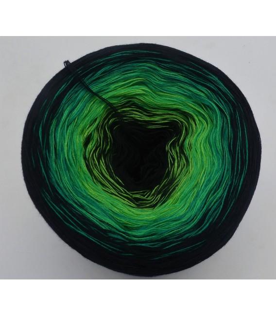 Oklahoma - 4 ply gradient yarn - image 2
