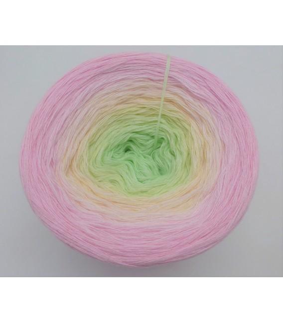 Daisy Boo - 4 ply gradient yarn - image 3