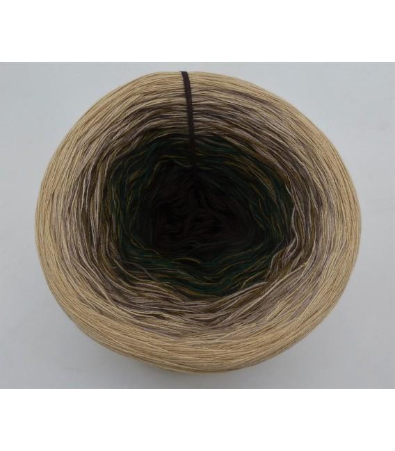 Gegen die Norm (Against the norm) - 4 ply gradient yarn - image 3