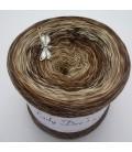 Strudel No. 12 - 4 нитевидные градиента пряжи