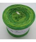 Strudel No. 13 - 4 ply gradient yarn