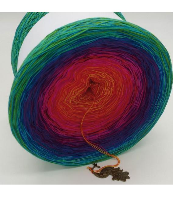 Paradiesvogel (Bird of paradise) Mega Bobbel - 4 ply gradient yarn - image 3