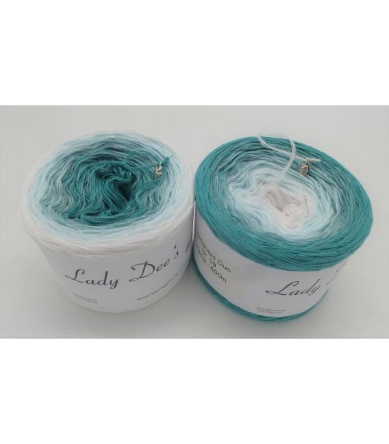 Verliebtes Duo (In love duo) - VD009 - 4 ply gradient yarn - image 1